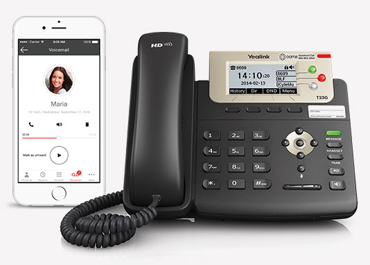 VoIP Phone Products for Small to Medium Sized Business