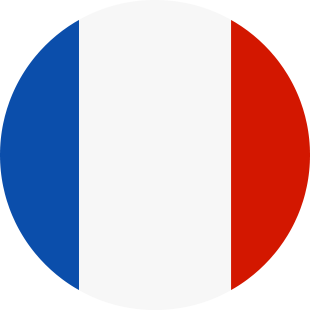 international flag of France