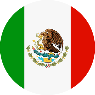 international flag of Mexico