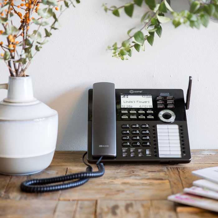 DP1 desk phone is affordable